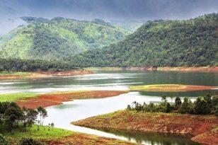 15 days North East India tour: Living Root bridges, Rhinos, Tea & Tribes