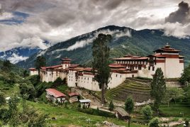 Bhutan Birdwatching Tour